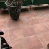 Pintar terrazas