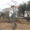 Construcción casa rústica