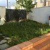 Plantar cesped - san agustin del guadalix