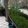 Arreglar unos jardines y plantar nuevas plantas