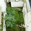 Reformar este pequeño patio con trastero