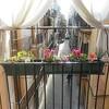 Soportes de herrajes para balcón