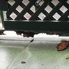 Reformar baranda de hierro de un balcón