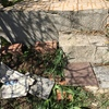 Escaleras y barandilla metalica jardín