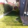 Cambiar la hierba por césped artificial