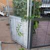Cambio de cancela acceso a patio