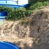 Realizar gunitado en talud de para contención de tierras