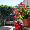 Cesped artificial en patio villavieja de yeltes (salamanca)