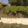 Restauración valla perimetral casa campo