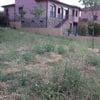 Plantar cesped con sistema de riego