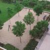 Poner cesped artificial sobre un arenero de 200 metros cuadrados en el que hay 8 pequeños arboles u 2 columpios