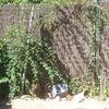 Construir muro de 7 m por 2,2 m