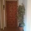 Reforzar puerta entrada apartamento