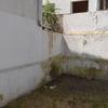 Picar y  rebozar pared patio exterior