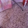 Pulir piso de terrazo
