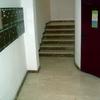 Pintar Patio y Escalera