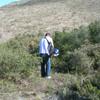 Limpiar de setos y maleza un terreno de 800m