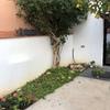 Muro para jardín