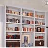 Mueble estanteria pladur