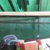 Cambiar techo de pista de squash
