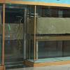 Reforma parcial tienda franquicia centro comercial