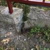 Muro de contencion jardin/casa