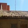 Limpieza de cobertura vegetal del tejado