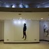 Guias para colgar cuadros, como los que tienen las galerías de arte