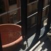 Reparación de bandillas en mi balcón