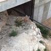 Construir escalera en valencia (villamarchante)