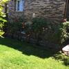 Mantenimiento jardín meses julio agosto y septiembre