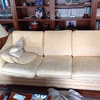 Tapizado sofas