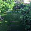 Presupuesto para mantenimiento de jardin