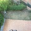Reformas en jardín en barcelona