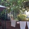 Instalación brezo