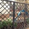 Ampliar suelo del patio exterior