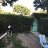 Reformar jardín quitar césped y poner artificial con un decorado de piedras