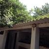 Desmontaje tejado uralita