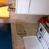 Cambiar Azulejos, Suelo, Cableado Eléctrico etc. en Cocina