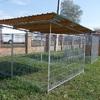 Jaula para exterior de perro con techo