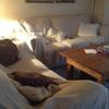 Tapizar sofás