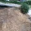 Levantar terreno dos metros, para nivelar jardín con casa y aprovechar de garaje