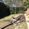 Hormigon impreso y pulido en jardin boadilla