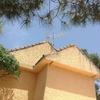 Revisar tejado y reponer tejas que falten