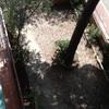 Poner pavimento en jardin comunitària