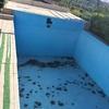 Hacer revisión y pintura de piscina de obra