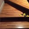 Sustitución peldaño madera escalera