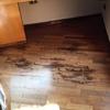 Arrancar parquet actual y colocar nuevo en salón