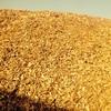 Transporte biomasa