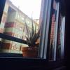 Solicito presupuesto para limpieza de ventanas